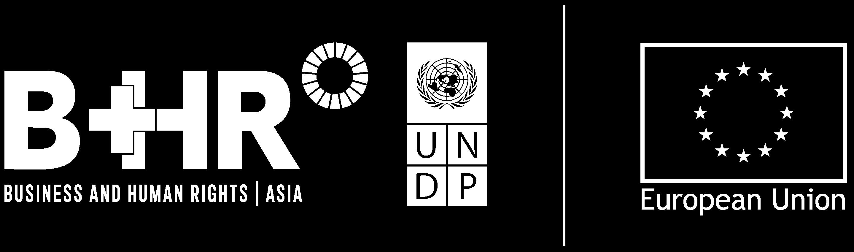 HR-EU logo-white
